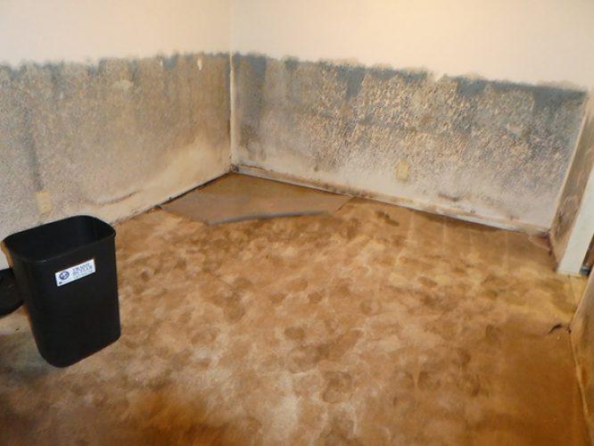 HR Walls and Floor