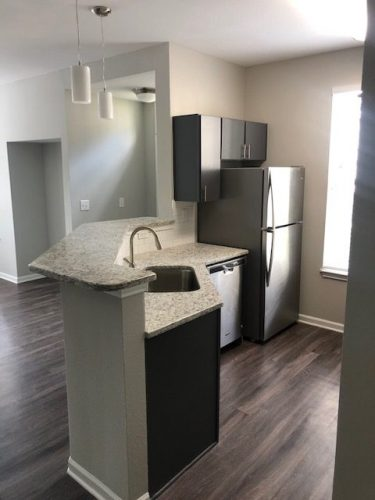 apartment kitchen cabinets countertop lighting appliances renovation