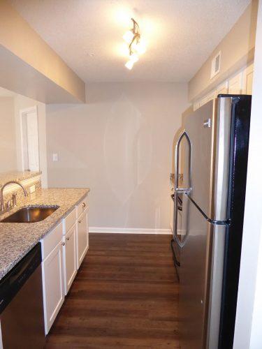 apartment kitchen lighting countertop appliance renovation