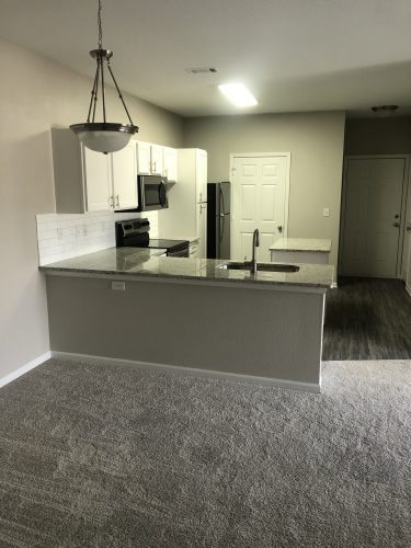 apartment kitchen renovation